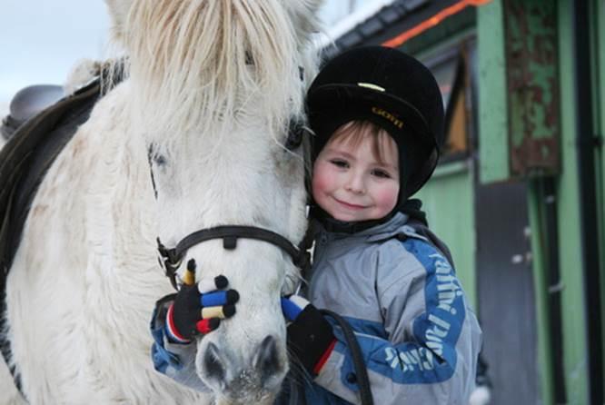 冰岛骑马,家庭骑马,简单骑马