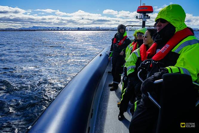 观鲸、观海鹦、雷克雅未克海岸观光团 - RIB快艇